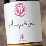 Ampeleia Ampeleia