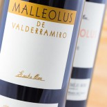 Malleolus De Valderramiro 2016