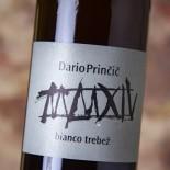 Dario Princic Bianco Trebez 2017